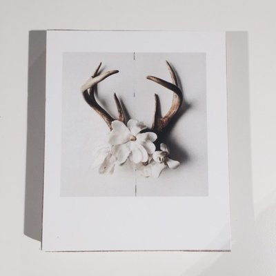 Home Circus Photoblock ''flower-deer